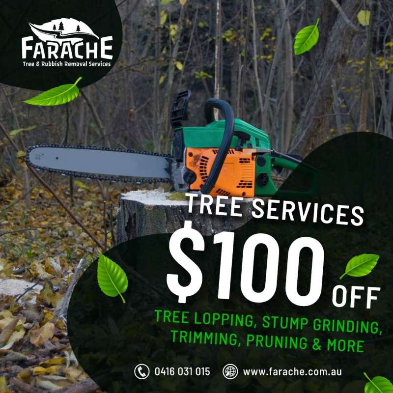 Tree Removal Airds
